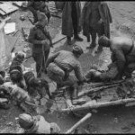 Вост. Германия, р-н Зееловых высот, апрель 1945г.Доставка раненого в эвакопункт на собаках.
